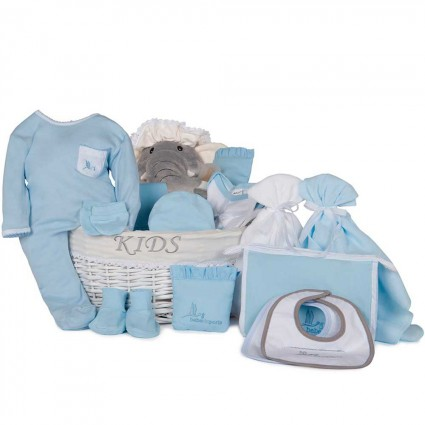 Post Hospital Complete Baby Gift Basket Grey