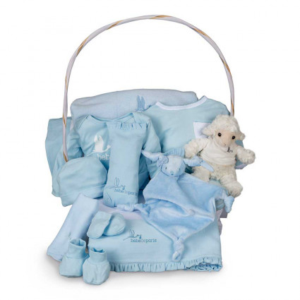 Newborn Baby Hamper & Baby Gift Baskets | BebedeParis South Africa Deluxe Serenity Baby Gift Basket