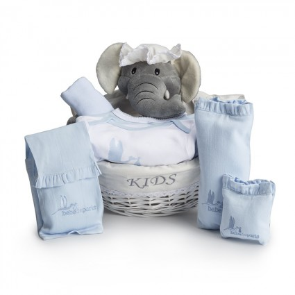 Newborn Baby Hamper & Baby Gift Baskets | BebedeParis South Africa Essential Post-Hospital Baby Gift Hamper